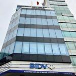 Cao ốc cho thuê văn phòng Nguyễn Hữu Cầu Building, Quận 1 - vlook.vn