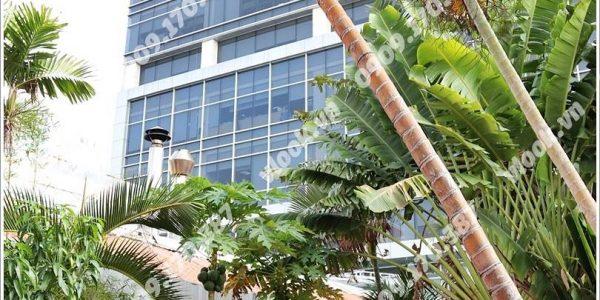 Cao ốc cho thuê văn phòng Fosco Phùng Khắc Khoan Phường Đa Kao Quận 1 TPHCM - vlook.vn