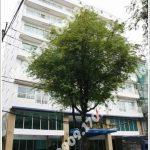 Cao ốc văn phòng cho thuê Hải Hà Building Nguyễn Văn Thủ Quận 1 TP.HCM