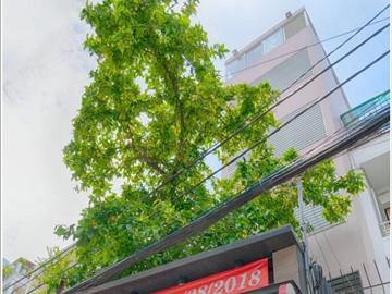 Cao ốc cho thuê văn phòng Holihomes Building, Nguyễn Đình Khơi, Quận Tân Bình - vlook.vn