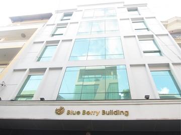 Cao ốc cho thuê văn phòng Blue Berry Building, Đường D52, Quận Tân Bình - vlook.vn